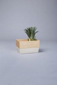 produit-design-conservation-legumes
