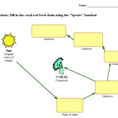 Coral Reef Food Chain Diagram Right Hand Palm Reading Reefs The Ocean S Treasure After You Finish Your Journal Entry Fill Out This Worksheet With Information Find From Website Click On Different Pictures