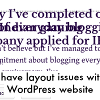 I have layout issues with WordPress website
