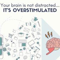 Your brain is not distracted it's overstimulated
