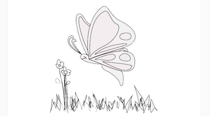 how-to-draw-a-butterfly_11_a