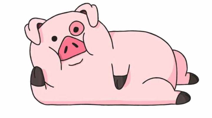 how-to-draw-a-pig_05