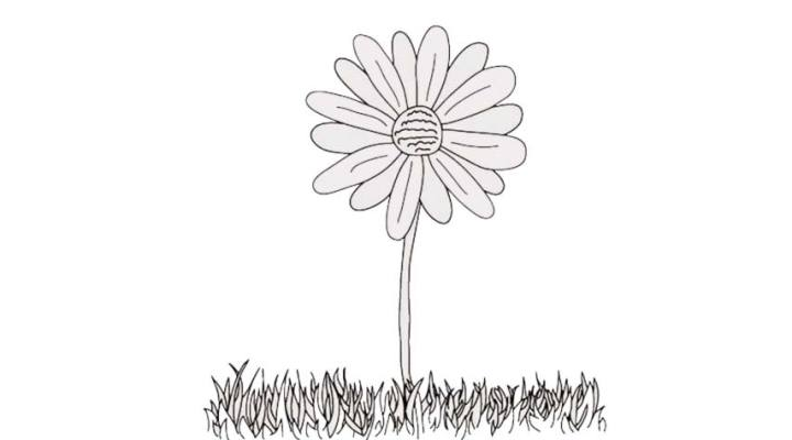 how-to-draw-a-daisy_09