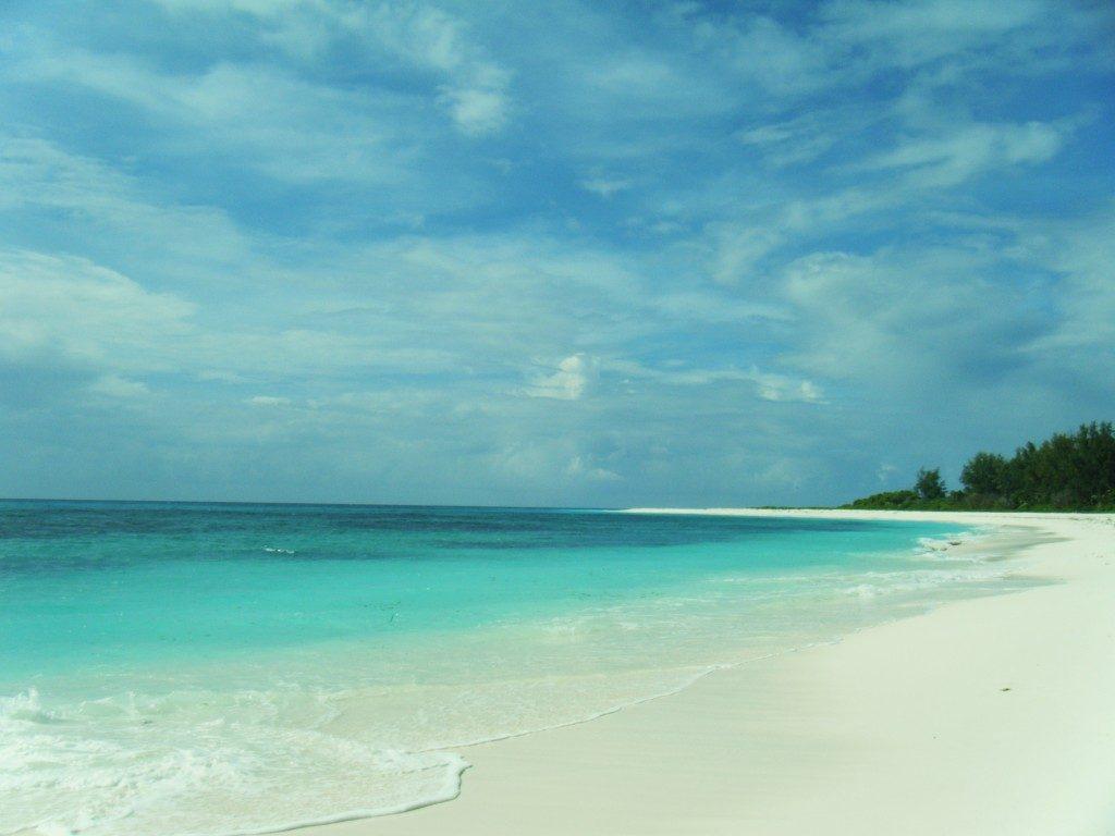 PLAGE-BIRD-Island-Seychelles