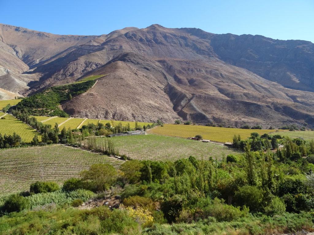 Vallée de l'Elqui au Chili