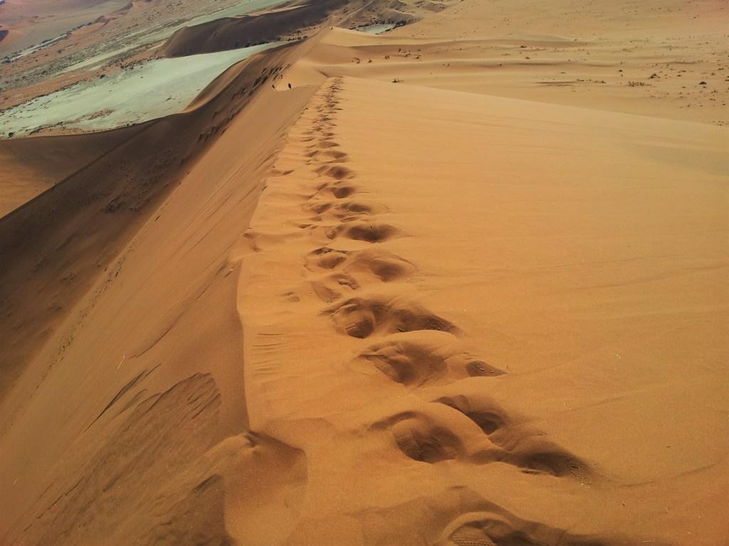 Trek dans le désert de Namibie