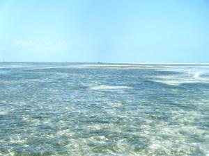 La mer sur l'Ile de Zanzibar