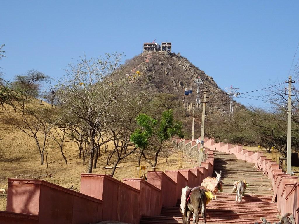 Sriviti temple inde pushkar