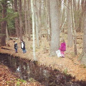 Exploring Nature with Children 10