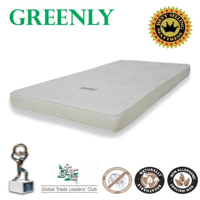 Special Promo Greenly Single Foam Mattress 4 Thickness Lazada Malaysia