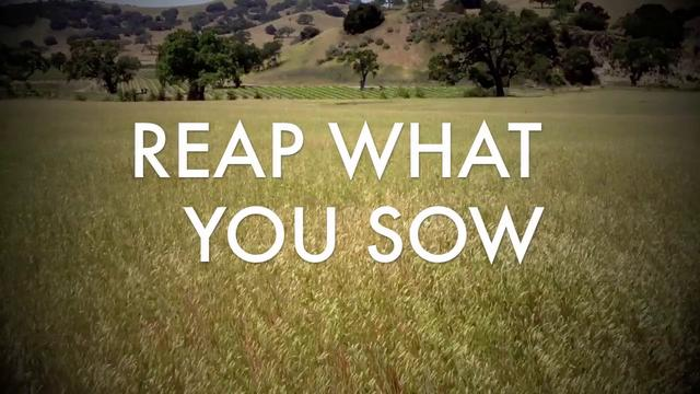 Reap what you sow….