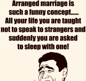Arranged-Marriage-Is-Such-A-Funny-Concept-DC020 2