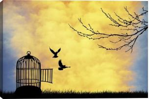 Cage-for-Bird-Canvas-Wall-Art-Print_grande