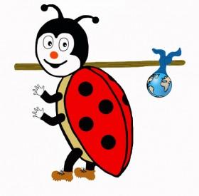 resizedimage280275-travelbug