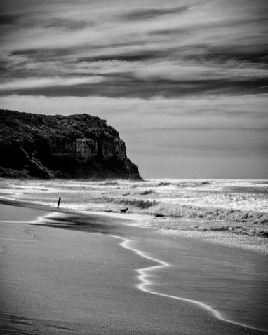 Boy and his dog playing in early morning surf at Dudley Beach, NSW, Australia. Backlit small waves with off shore wind