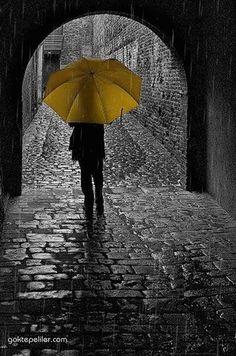 d2c02e74b1b40ddccda5178cf7e90d39--yellow-umbrella-umbrella-art