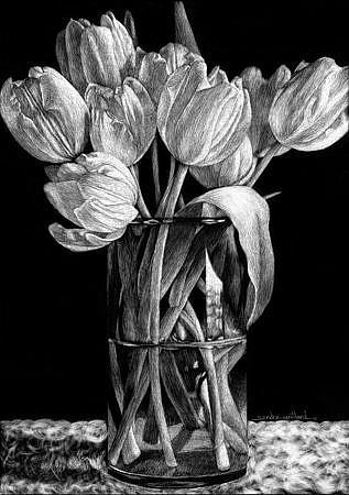Nine-Tulips-Smjpg