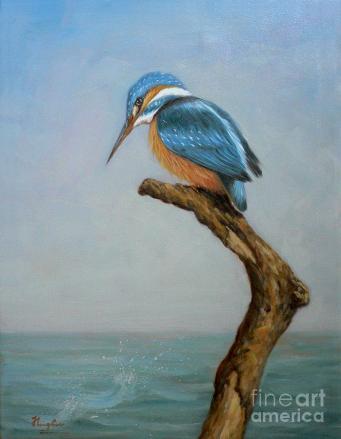 original-animal-oil-painting-bird-art-kingfisher-on-canvas-192-hongtao--huang