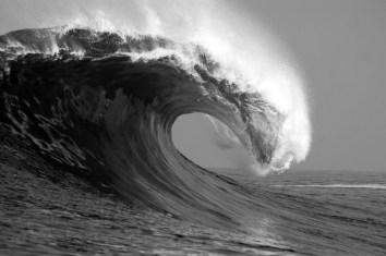 surfingdeaths