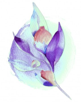 watercolor-flower-painting-15890440826Tx