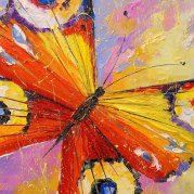 3-butterfly-olha-darchuk