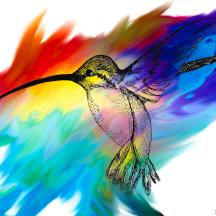 hummingbird-painting-the-studio-abstract-angel-artist-stephen-k