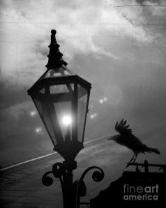 surreal-gothic-raven-with-night-stars-lantern-haunting-raven-black-and-white-night-lights-kathy-fornal