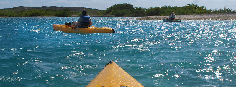 Virgin Kayak Tours St Croix