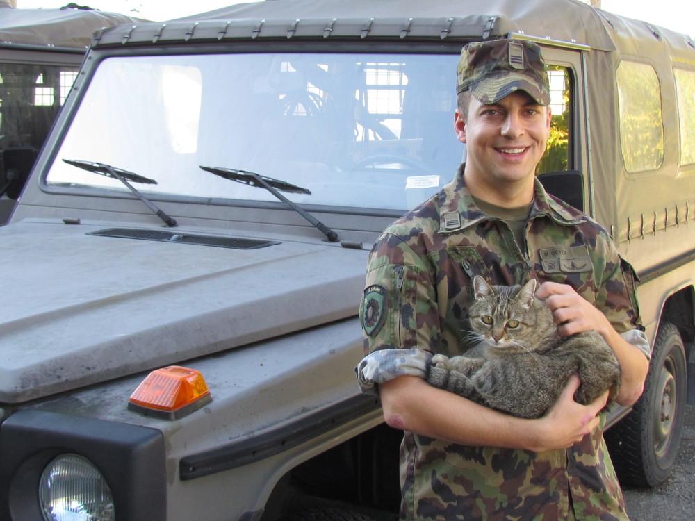 Брокколи с солдатом