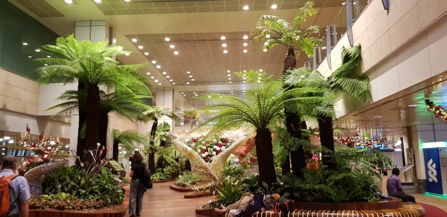 changi airport review
