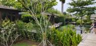 Amenities GajaPuri Koh Chang