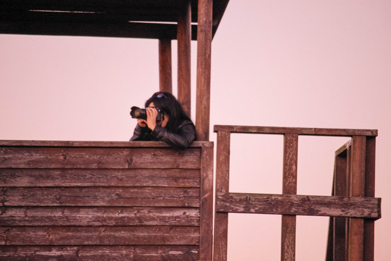 Guia de Fotografia para Iniciantes