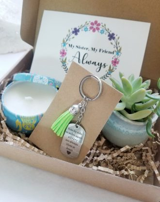 Sisters gift box, Send a gift set, Custom sister birthday present, Live succulent, personalized key chain, sibling gift, best friend gift