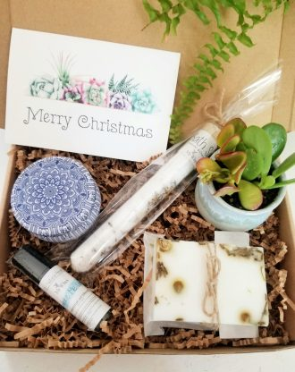 Christmas gift basket, Merry Christmas gift box for her, live succulent gift package, Holiday gift idea. Spa gift set with card 100% natural
