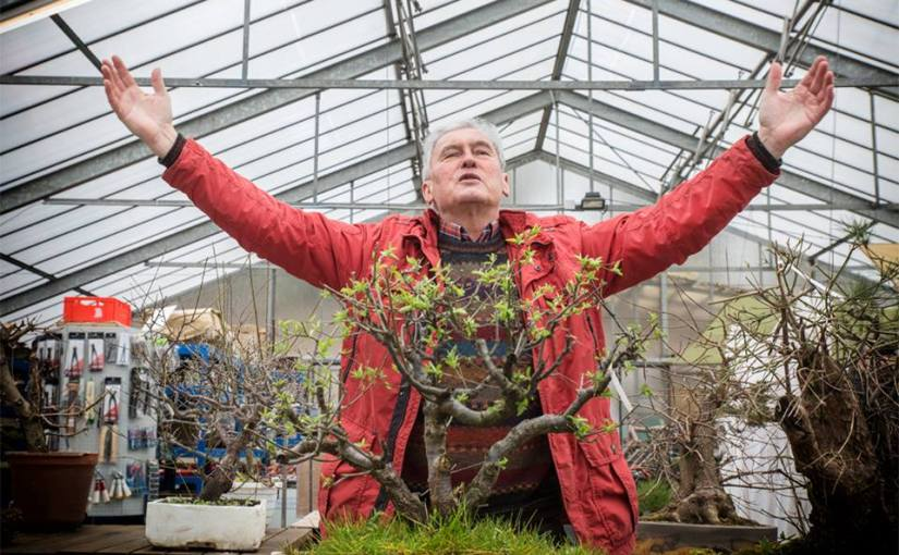 Bonsai Master Walter Pall visits the Chicago Botanic Garden