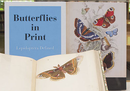 Butterflies in Print