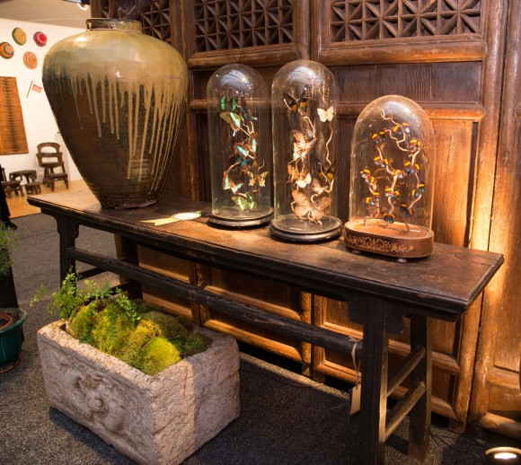 Booth #120, The Golden Triangle: An unrestored 19th century elm wood Chinese table with original patina and 19th century display cloches for butterflies (filled with a modern arrangement).