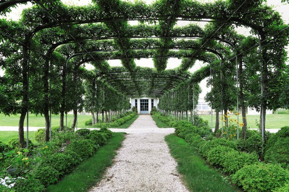 PHOTO: Looking through espaliered crabapple trees to the potting shed at the Mellons' Oak Spring Farm in Virginia.
