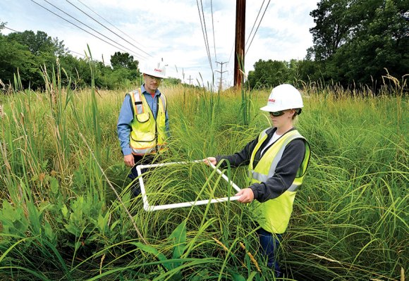 PHOTO: ComEd employees use a frame built of PVC pipe to measure a number of plants in a given square foot of prairie.
