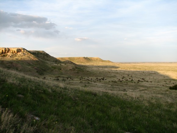 Comanche National Grasslands, Colorado— the shortgrass prairie where the study was conducted. (Photo: K. Skogen)
