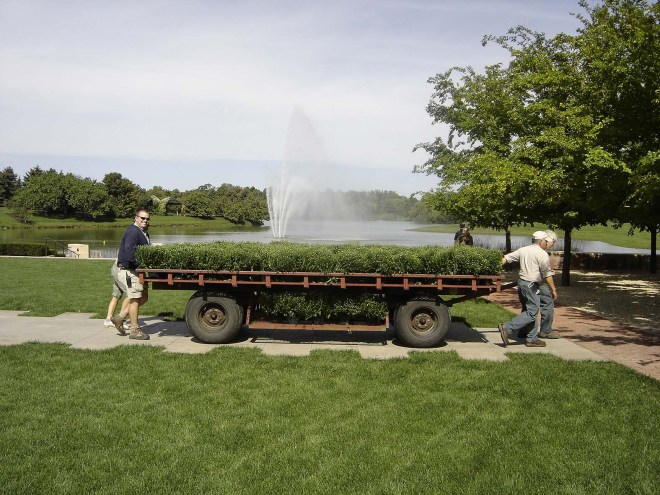 PHOTO: Garden staff are moving a large wagon loaded with potted mums to be transplanted in the Circle garden.