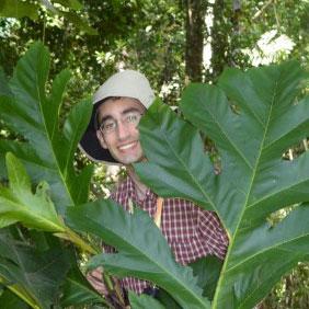 Treasure in the Tropics