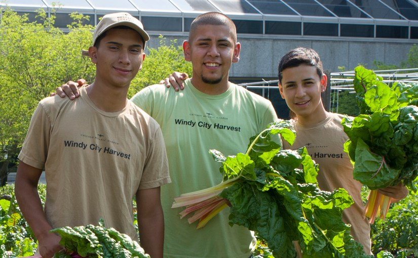 Putting Down Roots: Urban Agriculture at Work