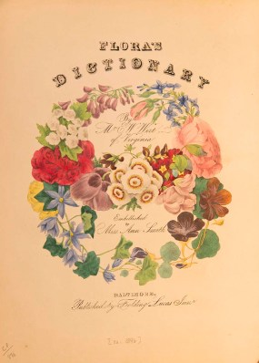 A non-written type of communication, the language of flowers needed a standardized dictionary in order to be properly understood.
