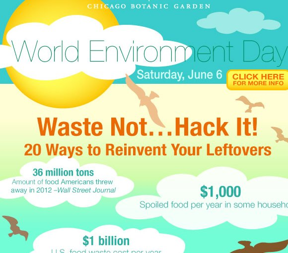 Join the food revolution on World Environment Day
