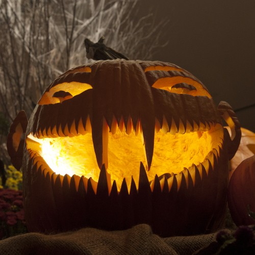 PHOTO: A ghoulish pumpkin grin.
