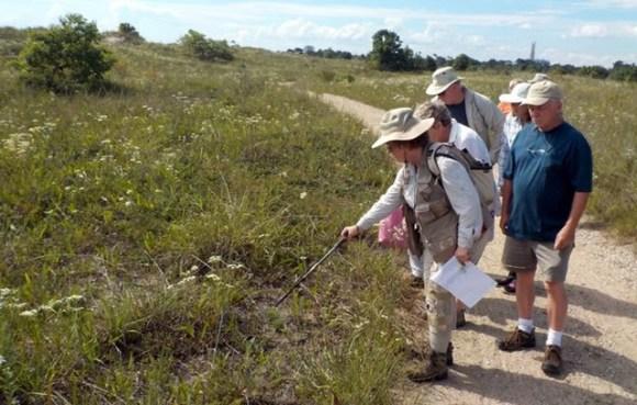 PHOTO: Kathy Garness leads a tour at Illinois Beach State Park.