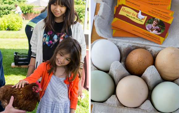 Two young girls pet a chicken and learn about raising chickens at home.