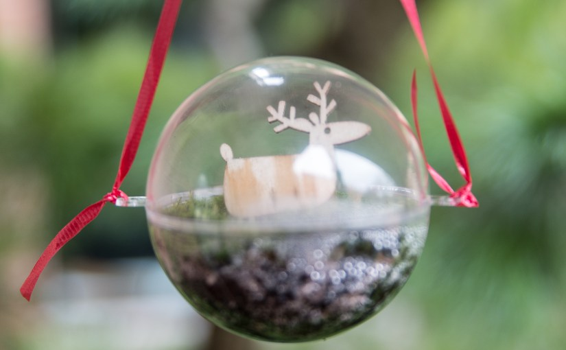 Make a Mini-Terrarium Holiday Ornament