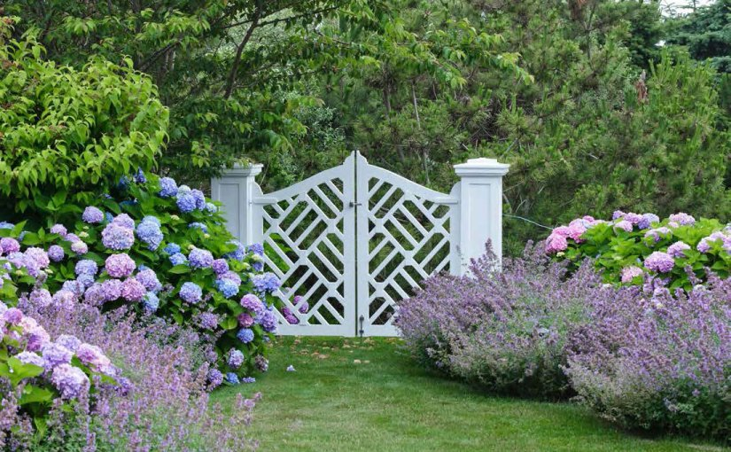 Picture your dream garden with Mario Nievera and Craig Bergmann